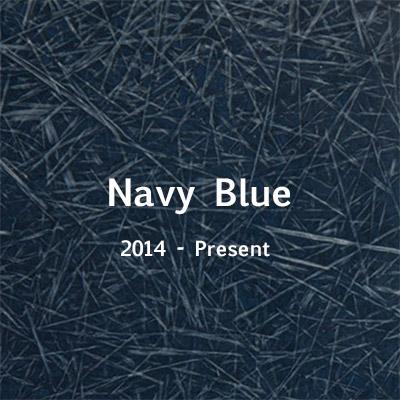 navy-2014.jpg